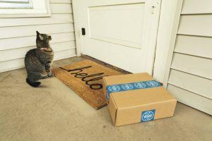 Caixa de papelão deixada ao lado de uma tapete de entrada, em frente à porta de uma casa e com um gato próximo